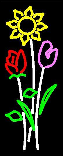 Birth Flowers